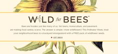 Wild For Bees - get a FREE packet of wildflower seeds to encourage the health of bees! Happy pollinator week!