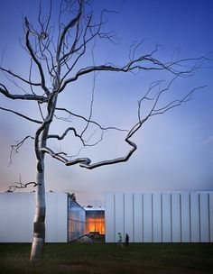 an-architectural-statement:  remash:  north carolina museum of art ~ thomas phifer stainless steel tree ~ roxy paine  NCMA is absolutely gorgeous, I am so lucky to have grown up just down the road from the states treasured art collections!