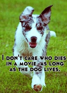 This is so true every time a person dies in a movie Im like ok whatever but if its an animal I'm like nooo and just lay down cry and then just die.
