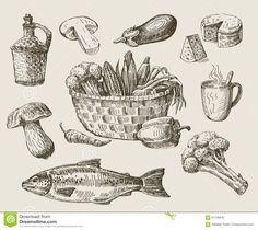 Hand Drawn Food Sketch Stock Vector - Image: 61135642