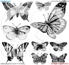 Clipart Retro Black And White Vintage Butterflies 1 - Royalty Free Vector Illustration by BestVector Butterfly Outline, Butterfly Back Tattoo, Butterfly Clip Art, Butterfly Images, Butterfly Drawing, White Butterfly, Vintage Butterfly Tattoo, Butterfly Illustration, Free Vector Illustration