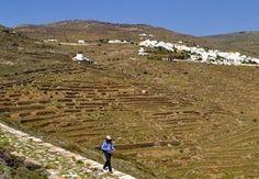 Στο όμορφο νησί της Τήνου εγκαινιάστηκε το δίκτυο μονοπατιών που ονομάζεται «Tinos Trails».  #tinos #greece #greekislands #tinostrails Country Roads, Travel, Viajes, Destinations, Traveling, Trips