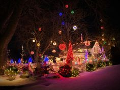 """This family turned their home and yard into Princess Lolly's Lollipop Woods. """"Gumdrops"""" hang from wintry bare-boned trees as the rainbow-inspired colors of Candy Land line the fence, home and cover the landscaping for a whimsical and playful effect."""