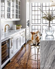 Knoll bar stools let friends and family, even canine companion Penny, cozy up to the Nuvolato marble island. Kitchen Interior, Home Interior Design, Kitchen Decor, Kitchen Design, Cozy Kitchen, Kitchen White, Marble Island, Compact Kitchen, Basic Kitchen