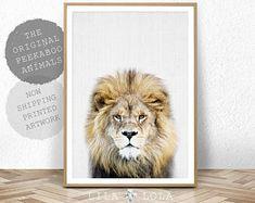 Lion Print, Boys Nursery Decor, Safari Baby Shower Print, Large Lion Poster, Kids Room Safari Lion Decor Print, Printed Artwork