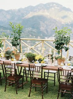 allie and joe italy wedding rehearsal dinner table decorated with lemons Wedding Reception Planning, Wedding Exits, Wedding Music, Wedding Ceremony, Reception Ideas, Boho Wedding, Event Planning, Wedding Decor, Wedding Flowers