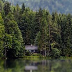 This is quite perfect. I would expand the yard for a tree house, trampoline, deer feeding trough, and dock/boathouse. Old Cabins, Lake Cabins, Cabins And Cottages, Cabins In The Woods, House In The Woods, Little Cabin, Little Houses, Cabana, Forest Cabin