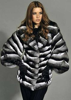 Black Velvet Chinchilla Fur Jacket  #furonline #furtrade #fur #chinchillafur…