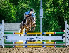 Agoura Hills Pony Club