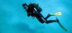 buzos marinos - Buscar con Google