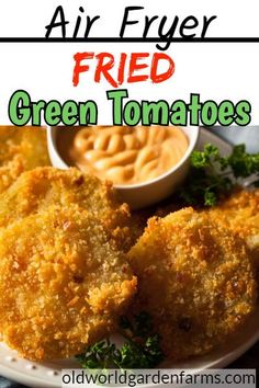 Air Fryer Fried Green Tomatoes - how to make this classic recipe a little healthier! Air Fryer Recipes Snacks, Air Fryer Recipes Vegetarian, Air Fryer Recipes Low Carb, Air Fryer Recipes Breakfast, Air Fry Recipes, Air Fryer Dinner Recipes, Vegetable Recipes, Appetizer Recipes, Healthy Recipes