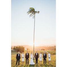 Byron View Farm - palm tree