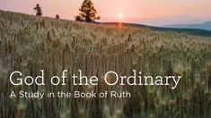 God of the Ordinary - Truth For Life Morning And Evening Devotional, Daily Devotional, Our Life, The Ordinary, God, Beach, Outdoor, Dios, Outdoors