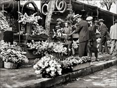 Athens florist shops below greek parliament Greece Photography, Retro Photography, Athens Hotel, Athens Greece, Old Pictures, Old Photos, Black White Photos, Black And White, Greek Flowers