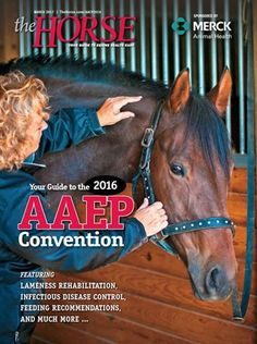 Free Download   Read our in-depth coverage of topics from the 2016 American Association of Equine Practitioners Convention in Orlando. #horses #horsehealth #AAEP2016 #TheHorse