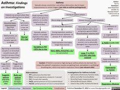 Asthma  Severe Allergic Asthma Saa  Infographics