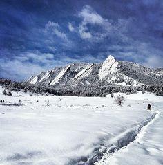 CU Buffs - University of Colorado Boulder - LOVE me some Flatirons