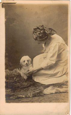 https://flic.kr/p/niPXbj   Beloved   Poodle and her lady friend.