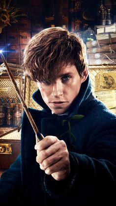 Fantastic Beasts Movie, Fantastic Beasts And Where, Harry Potter Fan Art, Harry Potter Characters, Newt Scamander Aesthetic, Newton Scamander, Beast Wallpaper, Harry Potter Wallpaper, Eddie Redmayne