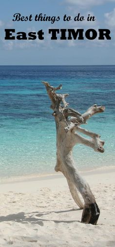East Timor is a land of adventure. Discover this beautiful island by yourself!