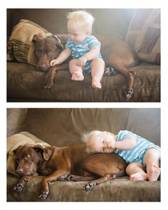 baby and dog love <3