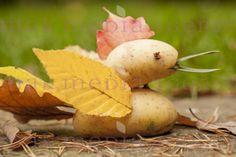 Figurki zrobione z ziemniaków i jesiennych liści