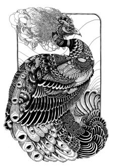Iain MacArthur.....even in black and white the peacock is so interesting