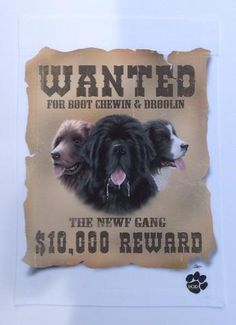 """""""Wanted"""" For Boot Chewin & Droolin - Garden Sized Flag"""