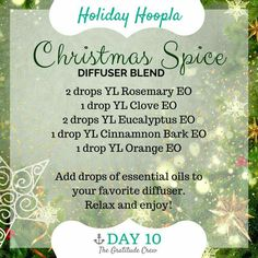 Christmas Spice Diffuser Blend