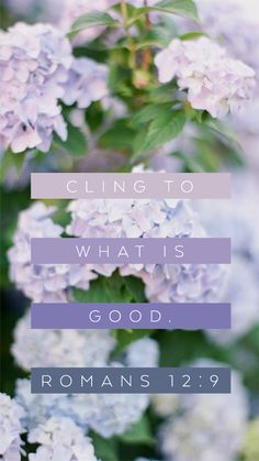 Cling to What's Good