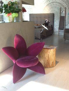 Poltrona Edra Giglio.19 Fantastiche Immagini Su Show Room Nel 2018 Showroom