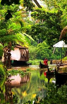 Cochin, India. Explore the Kerala backwaters as you take a motor boat ride through the waterways lined with dense tropical vegetation, and observe rural lifestyles that you would never see from the road.