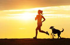 身体運動は脳を助ける。ランニングは、神経幹細胞から損なわれた増殖能力を回復させる。脳の老化に対する新たな希望となるだろうか?