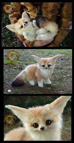 Handmade Fully Poseable Baby Fennec Fox! by Wood-Splitter-Lee.deviantart.com on @DeviantArt