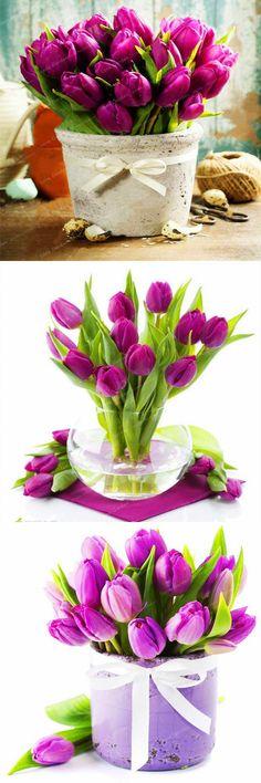 [Visit to Buy] Rare Purple Tulips Flowers Bonsai Tulip Seed Flower Plants Beautiful Aromatic Plants For Home Garden 10 Pcs(Not Tulip Bulb) #Advertisement