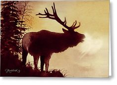 Elk Bugle Greeting Card by Jill Westbrook
