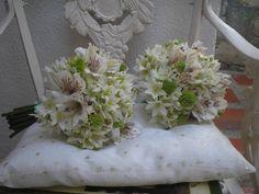 Bouquets de niñitas en estrellas de belen y astromerias variedad diamond.