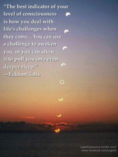 A Short Guide For vipassana meditation zen Spiritual Awakening, Spiritual Quotes, Spiritual People, Spiritual Warrior, Spiritual Symbols, Elkhart Tolle, Power Of Now, Consciousness, Inspirational Quotes