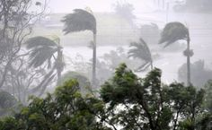 Strong wind and rain from Cyclone Debbie is seen effecting trees at Airlie Beach, located south of the northern Australian city of Townsville, March Bay Of Bengal, West Bengal, Cruise To Nowhere, Cyclonic Storm, Weather Warnings, Weather Conditions, Airlie Beach, Tropical, Wind And Rain