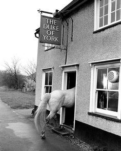 """""""Pub Stop, 1974 Copyright of John Drysdale """"At the pub near Billericay, Essex, the horse had become a steady customer after having shown a liking for beer."""