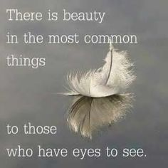 There-is-beauty-in-the-most-common