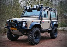 // Got to have a flag or two plus that winch and bar set.