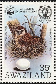 Pel's Fishing Owl  (Scotopelia peli) .  WWF Swaziland  stamp, circa 1982