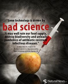 """doTerra Essential Oils ~ """"Gene technology is driven by bad science. It may well ruin our food supply, destroy biodiversity and unleash pandemics of antibiotic resistant infectious diseases."""" - Dr Mae-Wan Ho, head of the Bio-Electrodynamics laboratory at the Open University in Milton Keynes, UK http://www.naturalnews.com/non-GMO.html  www.mydoterra.com/maryhart"""