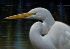 Great Egret 5x7, painting by artist George Lockwood