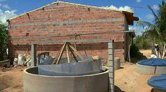 Comunidades rurais do Nordeste estão usando o fogão e conseguem economizar na compra do gás de cozinha.