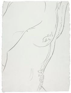 Andy Warhol  Nudes
