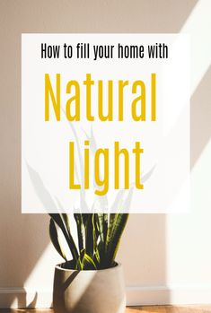 How to get more natural light in your home and make the most of your space #windows #naturalight #homedesign