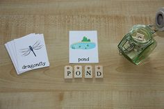 Montessori-Inspired Pond Unit (Photo from Counting Coconuts) - links to lots of Montessori-inspired pond activities