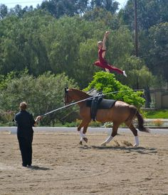 Whoa... Equestrian vaulting- coolest thing! I wanna try
